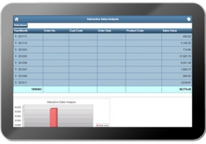 How well do your reports work on mobile devices?