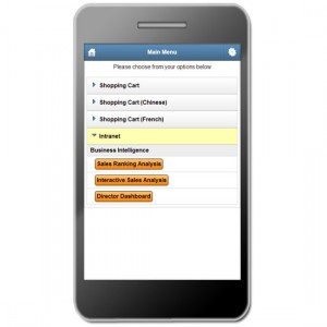An example of mobile customer extranet